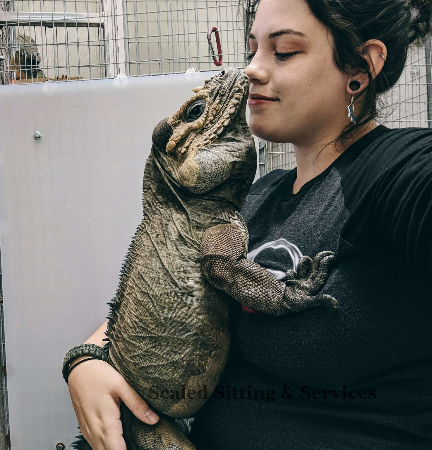 myself with an adult rhino iguana in my lap, our faces nearly touching