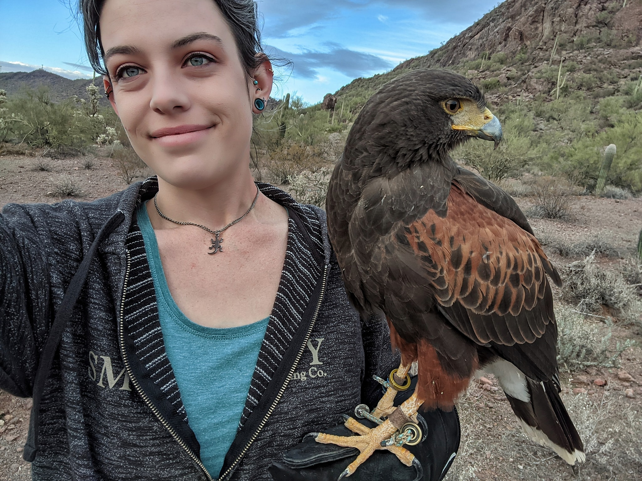 myself with a brown harris hawk standing on my gloved hand
